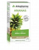 Arkogélules Ananas Gélules Fl/45 à POITIERS