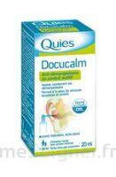 QUIES DOCUCALM ANTIDEMANGEAISONS DU CONDUIT AUDITIF, spray 20 ml à POITIERS
