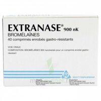EXTRANASE 900 nK, comprimé enrobé gastro-résistant à POITIERS