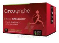 Santé Verte Circulymphe Triple Actions B/30 à POITIERS