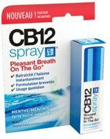 Cb 12 Spray Haleine Fraîche 15ml à POITIERS