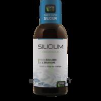 Santé Verte Silicium Solution buvable Fl/500ml à POITIERS