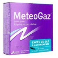 METEOGAZ Poudre orodispersible 20 sticks à POITIERS