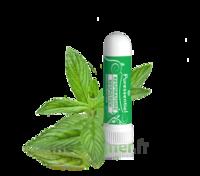 Puressentiel Respiratoire Inhaleur Respiratoire aux 19 Huiles Essentielles - 1 ml à POITIERS
