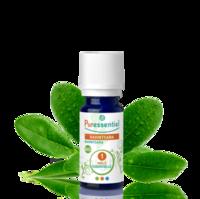 Puressentiel Huiles essentielles - HEBBD Ravintsara BIO* - 5 ml à POITIERS