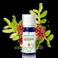 Puressentiel Huiles essentielles - HEBBD Lentisque pistachier - 5 ml à POITIERS