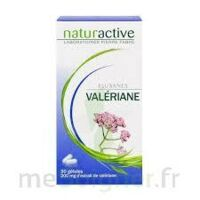 ELUSANES VALERIANE 200 mg, gélule Pilul/30 à POITIERS