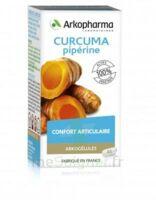 Arkogelules Curcuma Pipérine Gélules Fl/45 à POITIERS