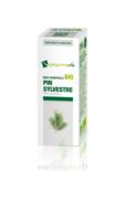Huile essentielle Bio Pin sylvestre à POITIERS