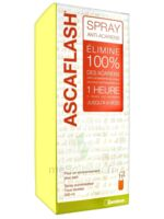 Ascaflash Spray anti-acariens 500ml à POITIERS