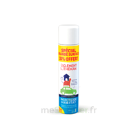 Clément Thékan Solution insecticide habitat Spray Fogger/300ml à POITIERS