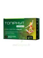 Santé Verte Toniphyt Multinature 30 Comprimés à POITIERS