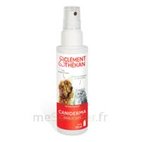 Clément Thékan Caniderma Solution Externe Cicatrisant Spray/125ml à POITIERS