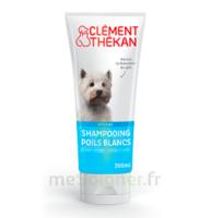 Clément Thékan Shampooing poils blancs T/200ml à POITIERS