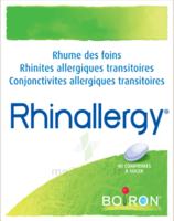 Boiron Rhinallergy Comprimés B/40 à POITIERS