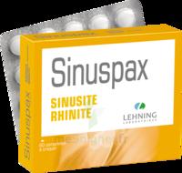 Lehning Sinuspax Comprimés à Croquer 3plq/20 à POITIERS