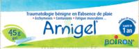Boiron Arnigel Gel T/45g à POITIERS